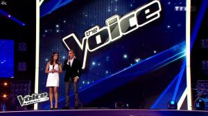 Karine Ferri dans The Voice - 18/01/14 - 13