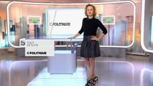 Caroline Roux dans C Politique - 01/02/15 - 02