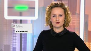 Caroline Roux dans C Politique - 01/02/15 - 03