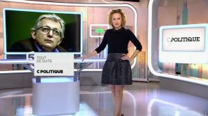 Caroline Roux dans C Politique - 01/02/15 - 04