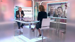 Caroline Roux dans C Politique - 01/02/15 - 12