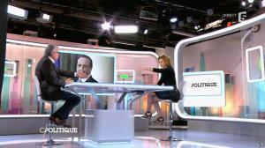 Caroline Roux dans C Politique - 01/02/15 - 20