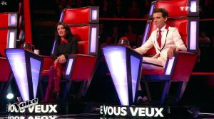Jenifer Bartoli dans The Voice - 24/01/15 - 05