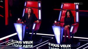 Jenifer Bartoli dans The Voice - 31/01/15 - 05