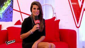 Karine Ferri dans The Voice - 14/02/15 - 03