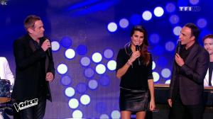Karine Ferri dans The Voice - 17/01/15 - 05