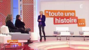 Sophie Davant dans Toute une Histoire - 02/02/15 - 01