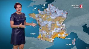 Anaïs Baydemir à la Météo de 20h - 04/01/16 - 06