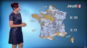 Anaïs Baydemir à la Météo de 20h - 04/01/16 - 10