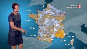 Anais Baydemir à la Météo de 20h - 04/01/16 - 16