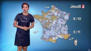 Anaïs Baydemir à la Météo de 20h - 04/01/16 - 23