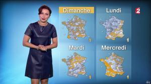 Anaïs Baydemir à la Météo de 20h - 04/01/16 - 24