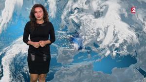 Anaïs Baydemir à la Météo de 20h - 12/01/16 - 02