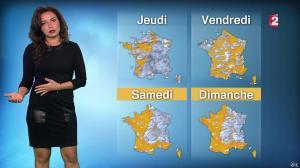 Anaïs Baydemir à la Météo de 20h - 12/01/16 - 07