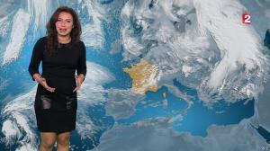 Anaïs Baydemir à la Météo de 20h - 12/01/16 - 10