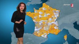 Anaïs Baydemir à la Météo de 20h - 12/01/16 - 11