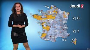 Anaïs Baydemir à la Météo de 20h - 12/01/16 - 14