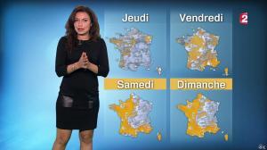 Anaïs Baydemir à la Météo de 20h - 12/01/16 - 15