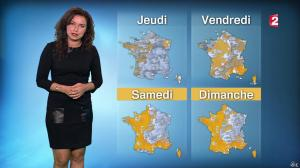Anaïs Baydemir à la Météo de 20h - 12/01/16 - 16