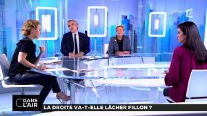 Caroline Roux dans C dans l'Air - 01/02/17 - 12