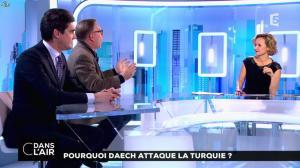 Caroline Roux dans C dans l'Air - 03/01/17 - 02