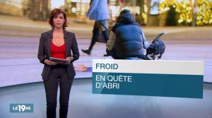 Nathalie Renoux dans le 19 45 - 06/01/17 - 03