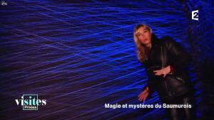 Pauline Reboul dans Visites Privées - 06/02/17 - 01