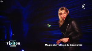 Pauline Reboul dans Visites Privées - 06/02/17 - 02