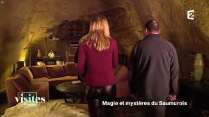 Pauline Reboul dans Visites Privées - 06/02/17 - 08