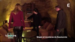 Pauline Reboul dans Visites Privées - 06/02/17 - 09
