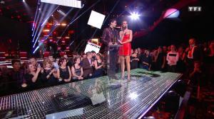 Sylvie Tellier dans les NRJ Music Awards - 12/11/16 - 01