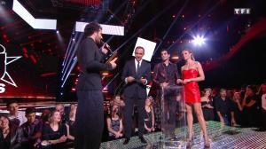 Sylvie Tellier dans les NRJ Music Awards - 12/11/16 - 03