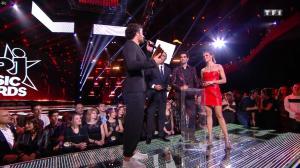 Sylvie Tellier dans les NRJ Music Awards - 12/11/16 - 04