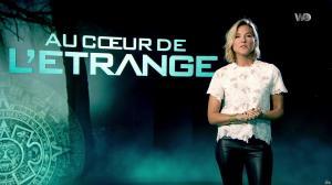 Stéphanie Renouvin dans Au Coeur de l'Etrange - 20/03/18 - 01