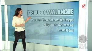 Anaïs Baydemir dans Télématin - 14/02/13 - 01