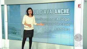 Anais Baydemir dans télématin - 14/02/13 - 02
