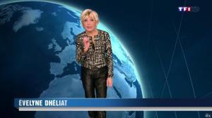 Evelyne Dhéliat à la Météo de de 20h - 04/12/13 - 01