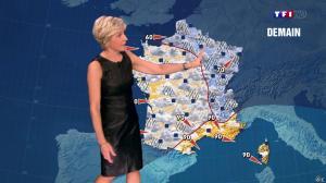 Evelyne Dhéliat à la Météo de de 20h - 05/11/13 - 02