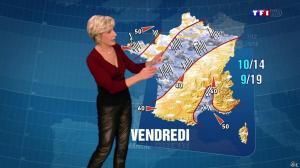 Evelyne Dhéliat à la Météo de de 20h - 06/11/13 - 02