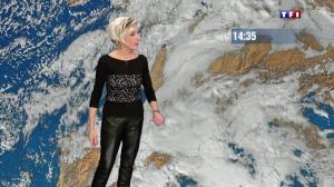 Evelyne Dhéliat à la Météo de de 20h - 18/11/13 - 02