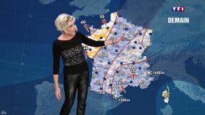 Evelyne Dhéliat à la Météo de de 20h - 18/11/13 - 04