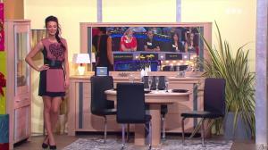 Fanny Veyrac dans le Juste Prix - 08/11/13 - 13