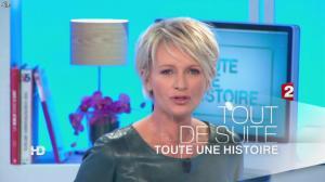 Sophie Davant dans Toute une Histoire - 11/12/12 - 01
