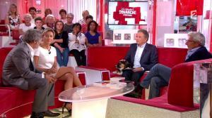 Anne-Sophie Lapix dans Vivement Dimanche Prochain - 07/09/14 - 16