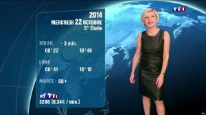 Evelyne Dhéliat à la Météo de 20h - 21/10/14 - 08