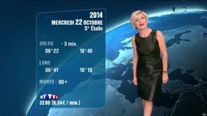 Evelyne Dhéliat à la Météo de 20h - 21/10/14 - 09