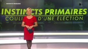 Laurence Ferrari dans Instincts Primaires les coulisses d'une election - 30/11/16 - 01