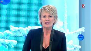 Sophie Davant dans Toute Une Histoire - 30/12/11 - 01