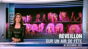 Anne Claire Coudray au 20h - 30/12/12 - 03