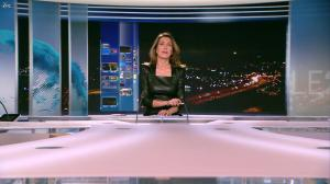 Anne Claire Coudray au 20h - 30/12/12 - 05